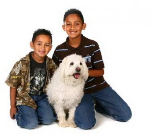 White dog with kids